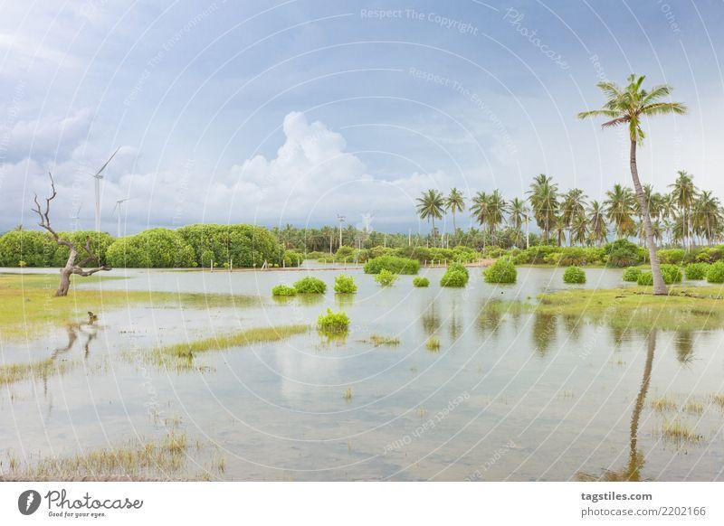Kalpitiya Lagune, Sri Lanka Natur Ferien & Urlaub & Reisen Sommer Wasser Sonne Landschaft Erholung Wolken ruhig Strand Küste Tourismus Freiheit Idylle
