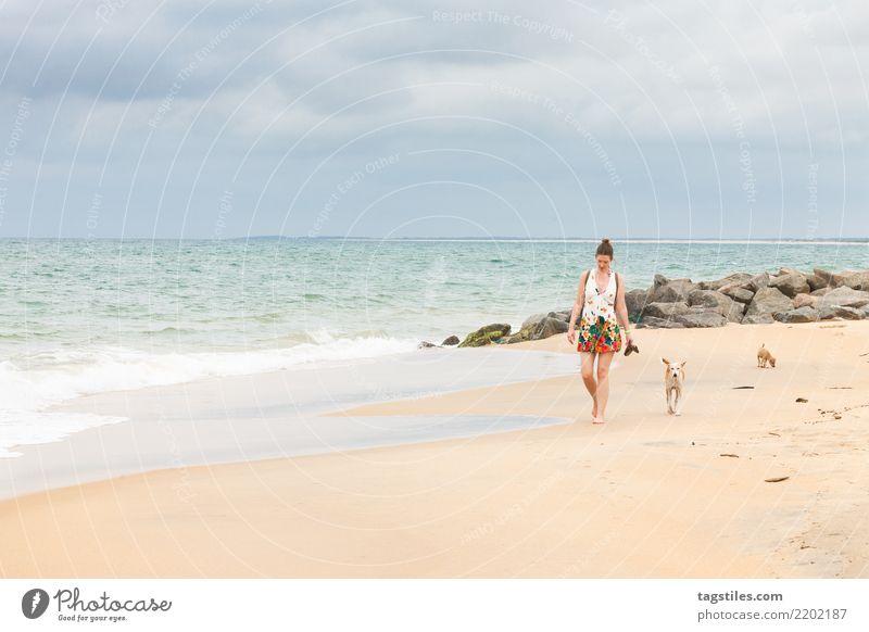 Frau Natur Ferien & Urlaub & Reisen Hund Sommer Wasser Sonne Landschaft Meer Erholung Strand Küste Tourismus Freiheit Sand Idylle