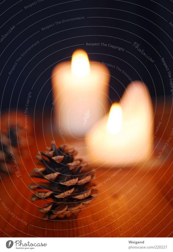 Auf dem Weihnachtsbasteltisch harmonisch Feste & Feiern braun Kerze Zapfen Abend gemütlich Winter Jahreszeiten Farbfoto Innenaufnahme Kerzenflamme Flamme