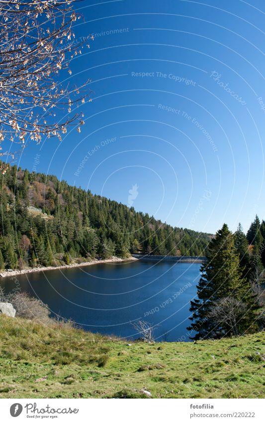 der herbst ist blau und grün Natur Wasser Baum Ferien & Urlaub & Reisen Ferne Erholung Freiheit Berge u. Gebirge Landschaft Umwelt Gras See Ausflug frei