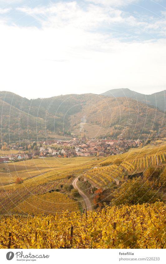 **10** nachträglich für lachfalte Natur Himmel Ferien & Urlaub & Reisen Wolken Ferne Erholung Herbst Berge u. Gebirge Landschaft Umwelt Ausflug Wein Dorf Hügel