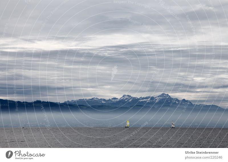 Bodensee See Wasser Segelschiff Alpen Berge u. Gebirge Himmel Wolken Bergkette blau Luft Urelemente Nebel weiß grau bedeckt Ferne ruhig Erholung Segeln