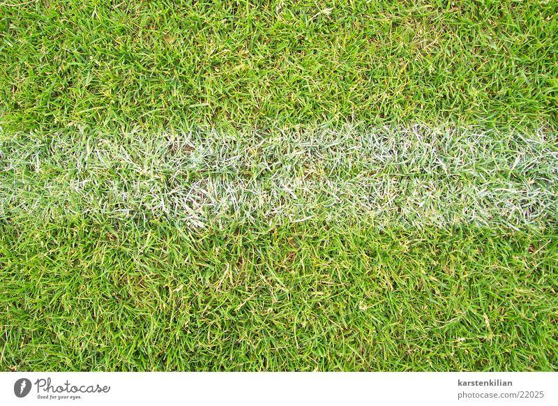 Auf der Linie spielen grün weiß Spielfeld Am Rand Wiese Gras Sport Rasen Fußball Grenze Schilder & Markierungen