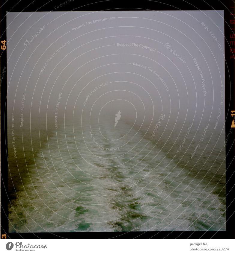 Reise Freiheit Natur Nebel Wellen Meer Schifffahrt Bewegung dunkel kalt trist wild Stimmung Endzeitstimmung Klima Spuren Gischt Fahrwasser Farbfoto
