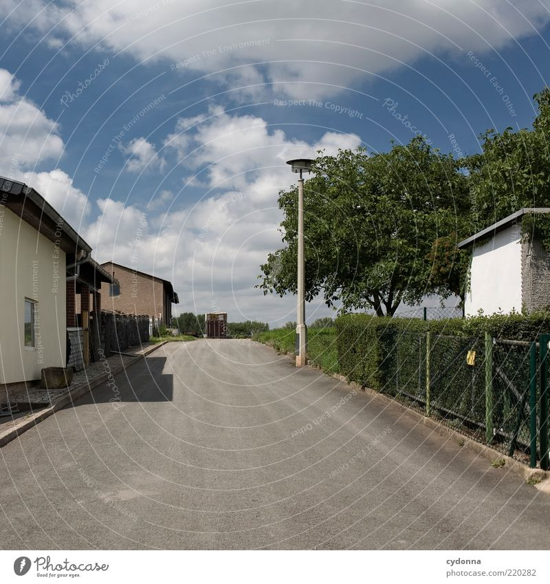 Sackgasse Natur Himmel ruhig Haus Einsamkeit Straße Leben Garten Wege & Pfade Umwelt Zeit Lifestyle trist Ende Asphalt Dorf