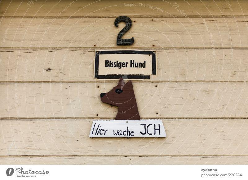 Vorsicht vor dem Hund! Lifestyle Stil Design Schriftzeichen Ziffern & Zahlen Hinweisschild Warnschild einzigartig Erwartung bedrohlich geheimnisvoll Idee