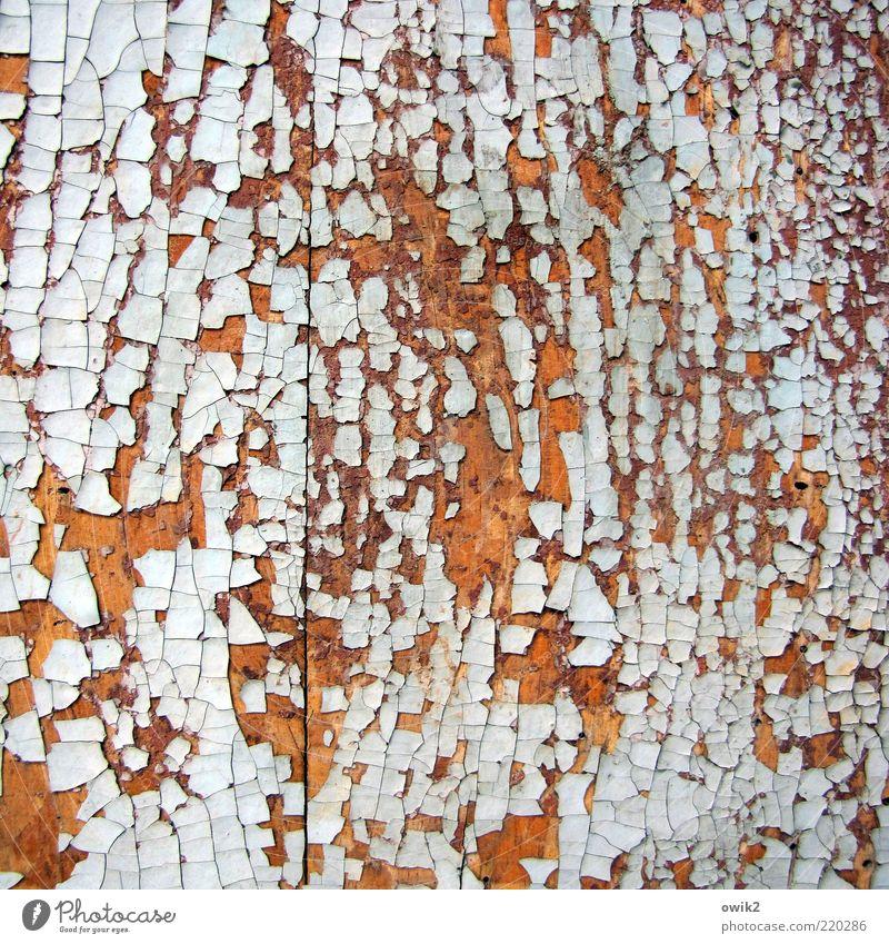 Mosaik Anstrich Farben und Lacke abblättern Tür Holz dehydrieren alt historisch viele blau braun weiß bizarr chaotisch Vergangenheit Vergänglichkeit verlieren
