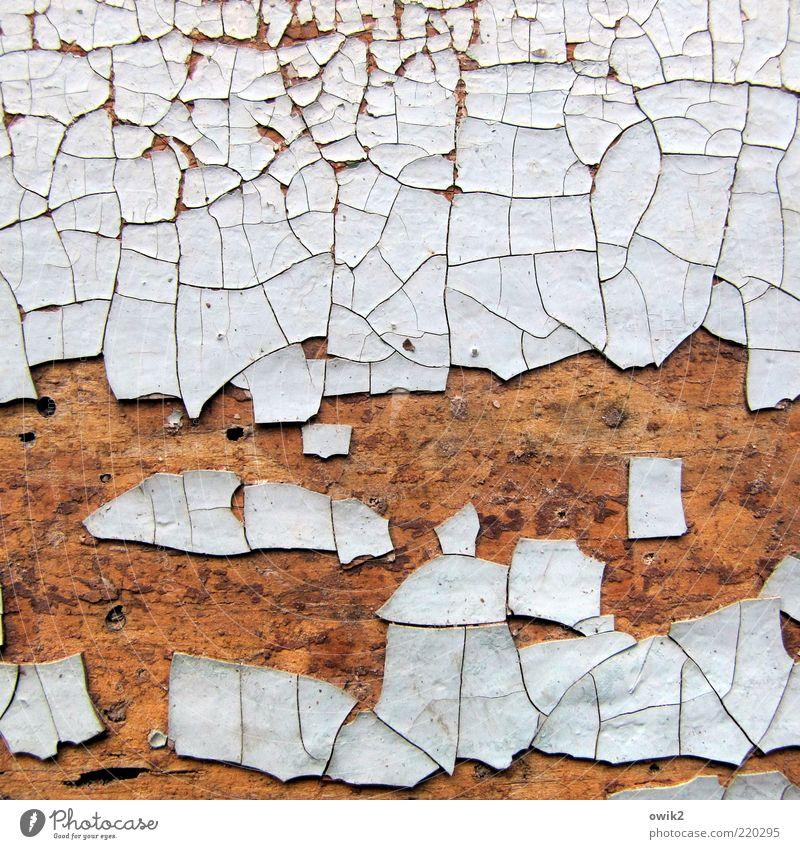 Mosaik (2) alt weiß blau Holz Farbstoff braun hell Tür Wandel & Veränderung Vergänglichkeit Verfall Vergangenheit trocken historisch viele Material