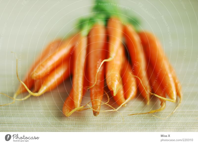 gelba Rumm Lebensmittel Gemüse Ernährung Bioprodukte Vegetarische Ernährung frisch lecker Möhre knackig Farbfoto mehrfarbig Menschenleer Hintergrund neutral