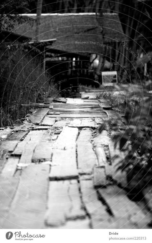 Farbloses Vertrauen weiß schwarz Architektur Armut kaputt einfach einzigartig natürlich verfallen Verfall Steg schäbig Schwarzweißfoto baufällig Fischerdorf