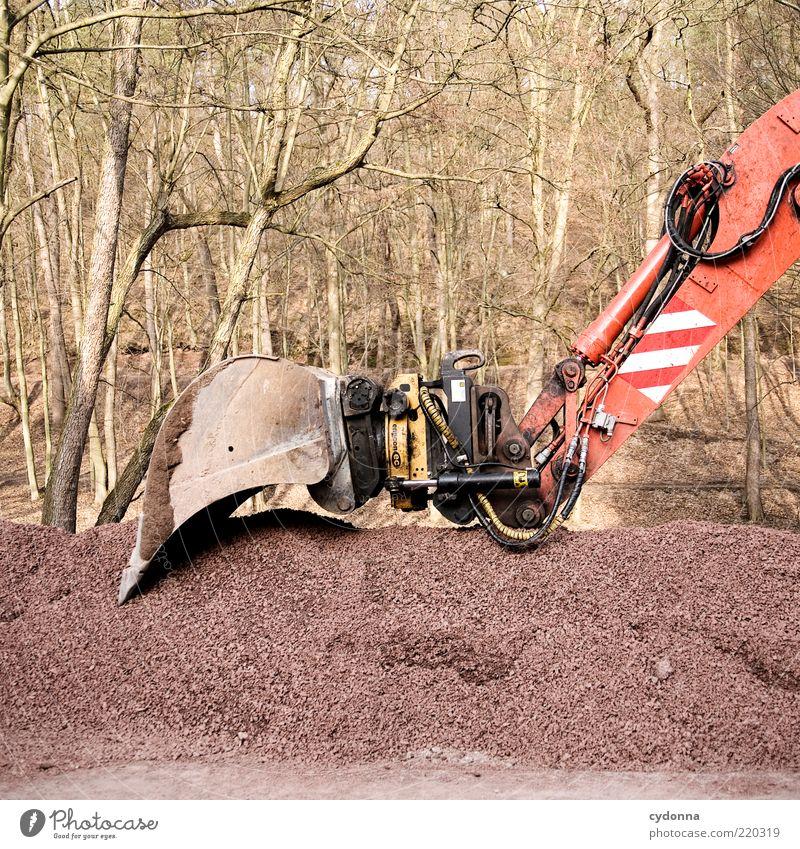 Ruhephase Natur Baum ruhig Wald Kraft Umwelt Technik & Technologie Pause Baustelle Kies Industrie stagnierend Bagger Feierabend Baumaschine hydraulisch