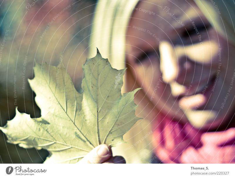 Herbstgefühle Frau Mensch Jugendliche Pflanze ruhig Blatt feminin Gefühle Glück Kopf Zufriedenheit Erwachsene Perspektive nah Neugier