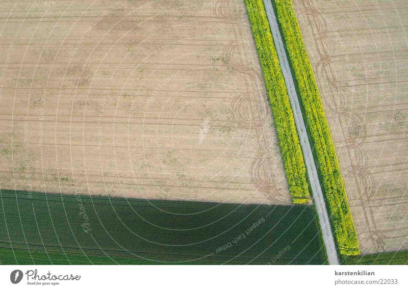 Landschaftsmalerei Feld Wiese Kunst geschmackvoll grün braun Natur Ernte rasenmähen Garten sähen