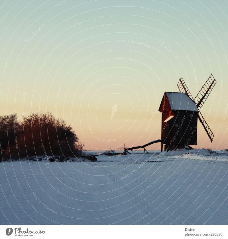 Bock-Windmühle im Schnee Natur Landschaft Luft Wolkenloser Himmel Winter Schönes Wetter Dorf Bockwindmühle Sehenswürdigkeit alt authentisch eckig braun gelb