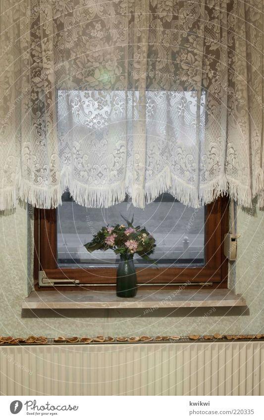 oma Häusliches Leben Wohnung Innenarchitektur Dekoration & Verzierung Tapete Raum Fenster Gardine Fensterbrett Blume Heizung Jalousie alt trist grün Vase