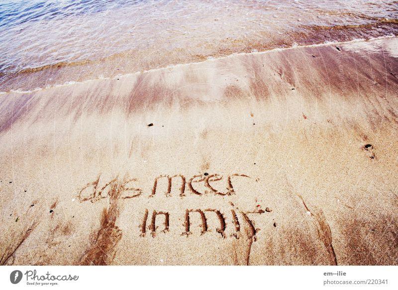 aufgewühlt Natur Wasser Meer Sommer Strand ruhig Sand Zufriedenheit Küste Wetter Schriftzeichen Frieden Zeichen Nordsee Glaube Gefühle