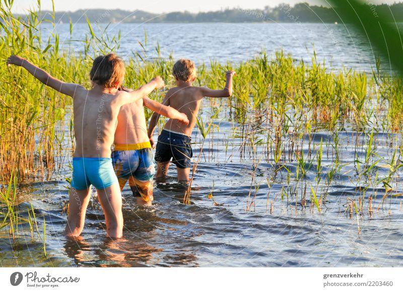 Seewartung Schwimmen & Baden Sommer Mensch Junge Kindheit 3 Kindergruppe 8-13 Jahre Abenteuer Schilfrohr Badesee Plauer Werder staksen warten