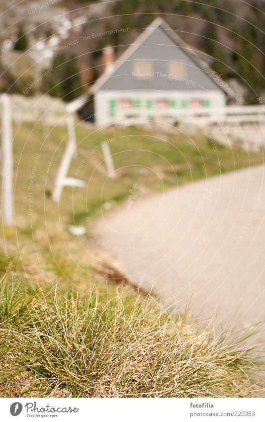 auf der alm da gibts... Natur Pflanze Sommer Haus Straße Erholung Wiese Herbst Gras Berge u. Gebirge Wege & Pfade Landschaft Umwelt Asphalt Hügel entdecken