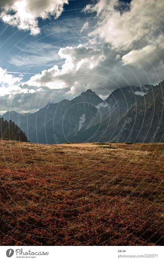 Das Ende eines Sommers blau rot ruhig Wolken Herbst Gras Berge u. Gebirge Wege & Pfade gold frei Romantik Alpen Sehnsucht Hügel Gipfel