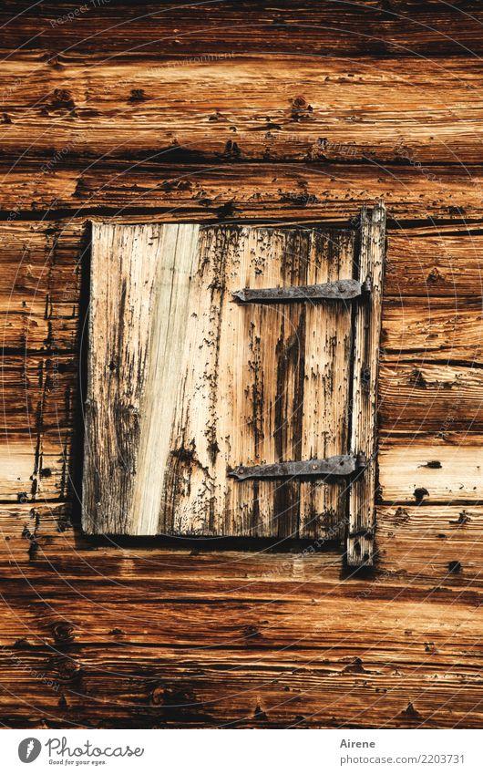Geh, mach dei' Fensterl auf! Wohnung Hütte Holzhaus Blockhaus Berghütte Fassade Fensterladen alt Armut außergewöhnlich einfach natürlich braun Sicherheit Schutz