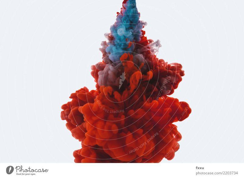 Acyl trifft auf Wasser blau Farbe weiß rot Wolken Farbstoff Kunst Design Wellen Wassertropfen Tropfen nah Flüssigkeit Verwirbelung Tinte