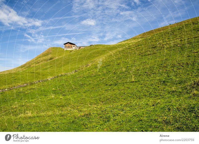 Zielobjekt Berge u. Gebirge wandern Himmel Schönes Wetter Wiese Alpen Bergwiese Bregenzerwald Hütte Alm Almwirtschaft Berghütte Ferne hoch klein oben blau grün