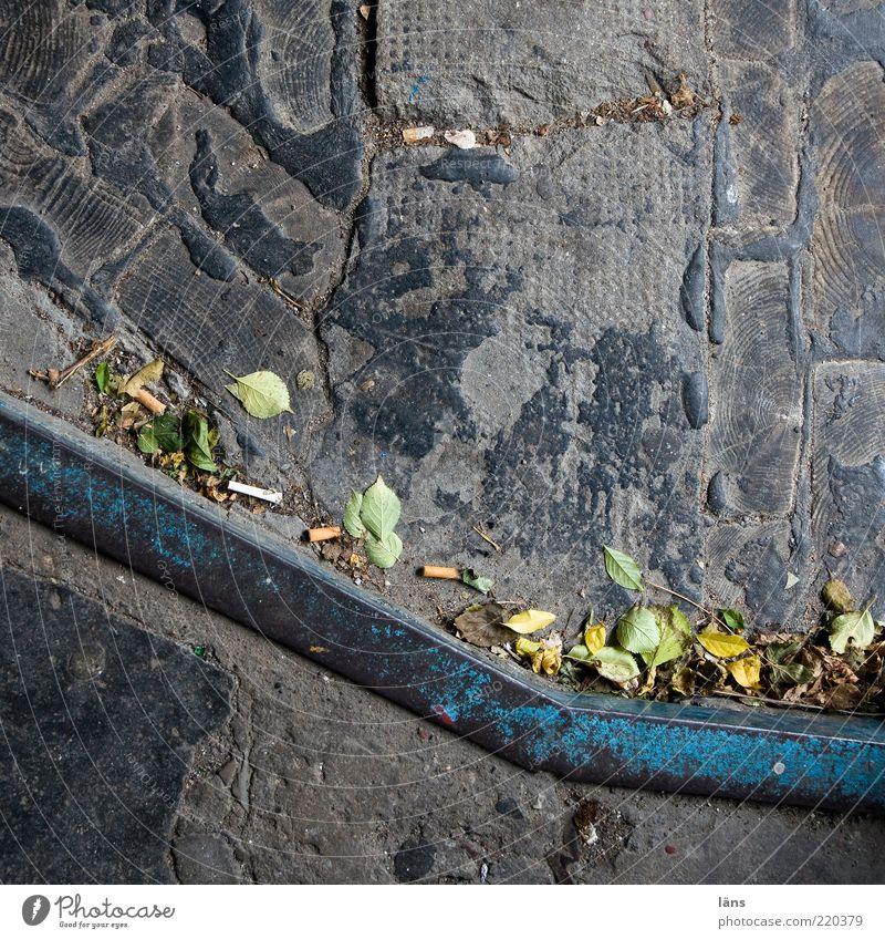 Materialmix alt blau Blatt Herbst Holz grau Stein Wege & Pfade Linie Metall Beton Niveau Wandel & Veränderung liegen Vergänglichkeit Verfall