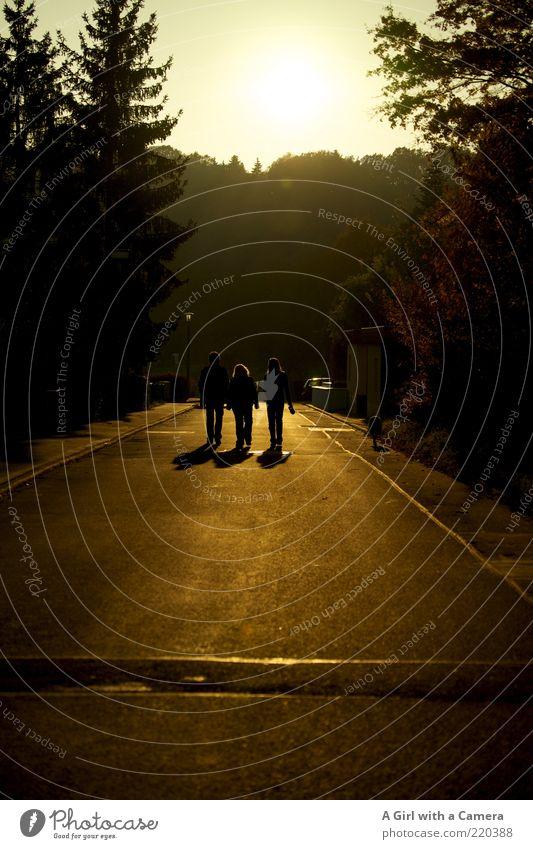 walking on sunshine Mensch schwarz Straße Freundschaft Zufriedenheit gold gehen Spaziergang Asphalt Dorf Tanne Zusammenhalt Teer Fußgänger Wohnsiedlung