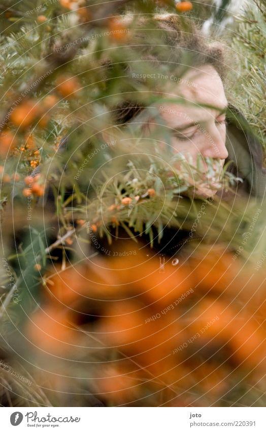 Versteck Frucht maskulin Junger Mann Jugendliche Erwachsene Umwelt Natur Pflanze Sträucher Sanddorn hocken träumen Neugier Gefühle Sicherheit Schutz ruhig Scham