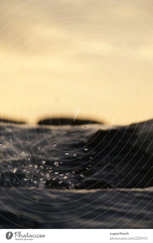 Schwarza 5 Natur Wasser Wellen nass Wassertropfen frisch Fluss authentisch Sauberkeit Flüssigkeit Bach spritzen Erfrischung spritzig Wasserspritzer
