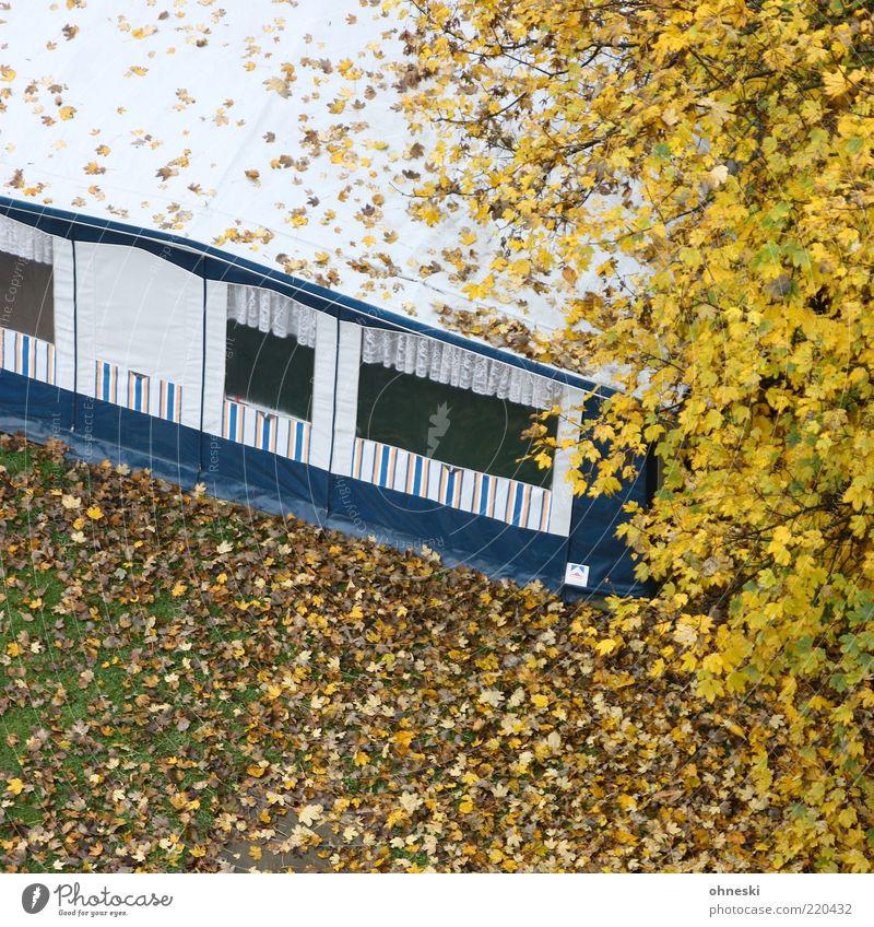Camping Baum Ferien & Urlaub & Reisen Blatt Wiese Herbst Häusliches Leben Camping vertrocknet Zelt Herbstlaub Wohnwagen Zweige u. Äste Unbewohnt Herbstfärbung Winterpause Nebensaison
