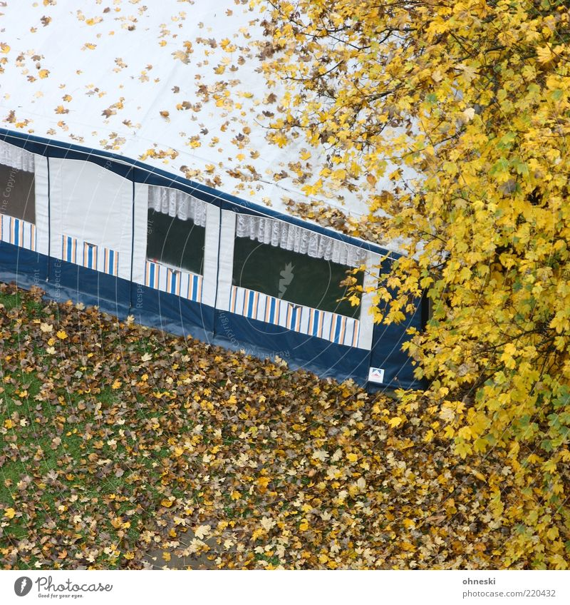 Camping Baum Ferien & Urlaub & Reisen Blatt Wiese Herbst Häusliches Leben vertrocknet Zelt Herbstlaub Wohnwagen Zweige u. Äste Unbewohnt Herbstfärbung