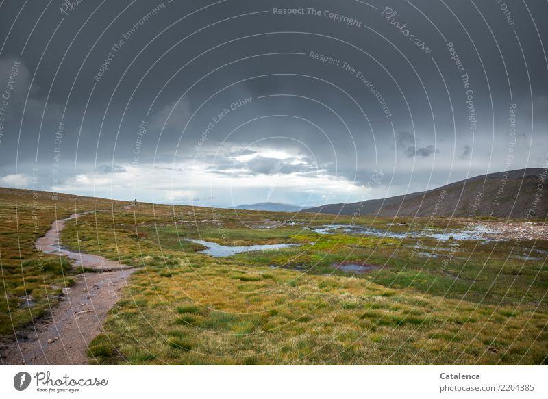 Nach dem Regen wandern androgyn 1 Mensch Landschaft Pflanze Gewitterwolken Sommer schlechtes Wetter Gras Hügel Berge u. Gebirge Teich Bach Sumpf Hochmoor