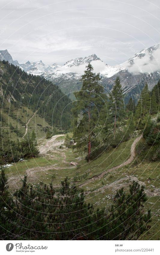 Die Hochlegeralm ... | Karwendel [4] grün Sommer ruhig Wolken Einsamkeit Ferne kalt Schnee Herbst Berge u. Gebirge grau Wege & Pfade Alpen Unendlichkeit Tanne