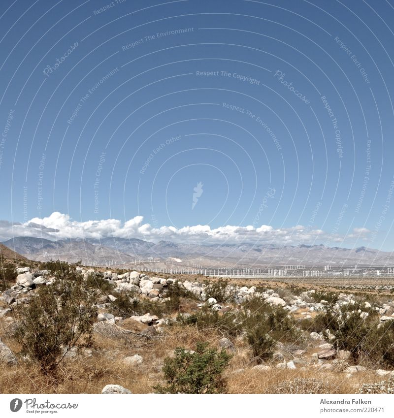 Windradpark. Umwelt Natur Landschaft Himmel Wolken Klima Berge u. Gebirge Wüste blau Windkraftanlage Park Energie Energiewirtschaft Sträucher Energiekrise