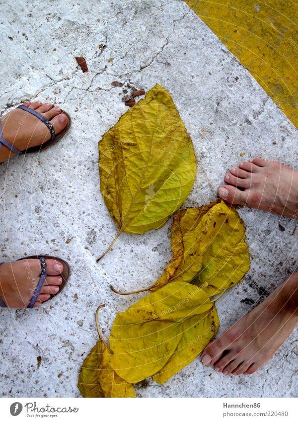 wo willst du hin? Frau Mensch Mann Natur weiß Pflanze Blatt gelb Leben Herbst feminin Stein Wege & Pfade Fuß maskulin Umwelt