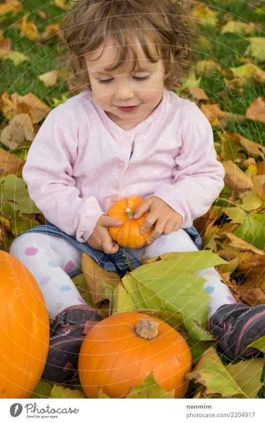 Umfassende Kürbise des entzückenden Mädchens todler auf einem Herbstfeld Freude Garten Halloween Natur Blatt Park Wald Lächeln träumen Umarmen Fröhlichkeit hell