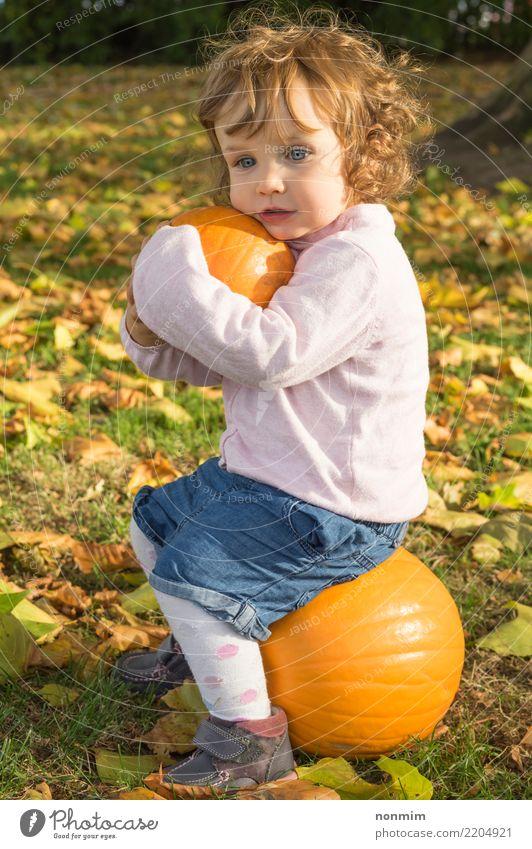 Umfassende Kürbise des entzückenden Mädchens todler auf einem Herbstfeld Garten Halloween Natur Blatt Park Wald Lächeln träumen Umarmen Fröhlichkeit hell