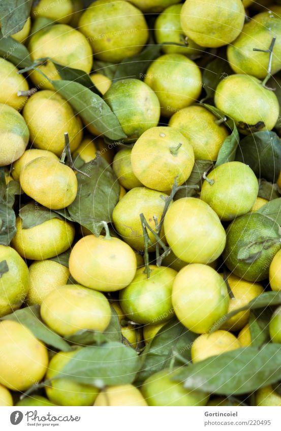 Fruchtig Lebensmittel Ernährung frisch sauer Zitrusfrüchte zitronengelb Mandarine Farbfoto Schwache Tiefenschärfe natürlich biologisch ökologisch grün
