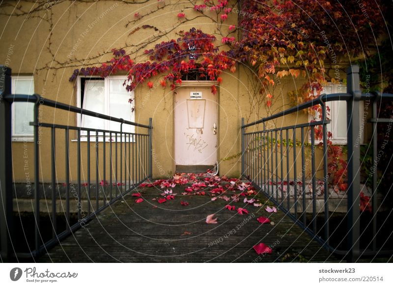 Kein Eingang! Wohnung Haus Herbst Baum Blatt Menschenleer Brücke Bauwerk Gebäude Architektur Mauer Wand Fassade Fenster Tür alt Duft fallen verblüht dehydrieren