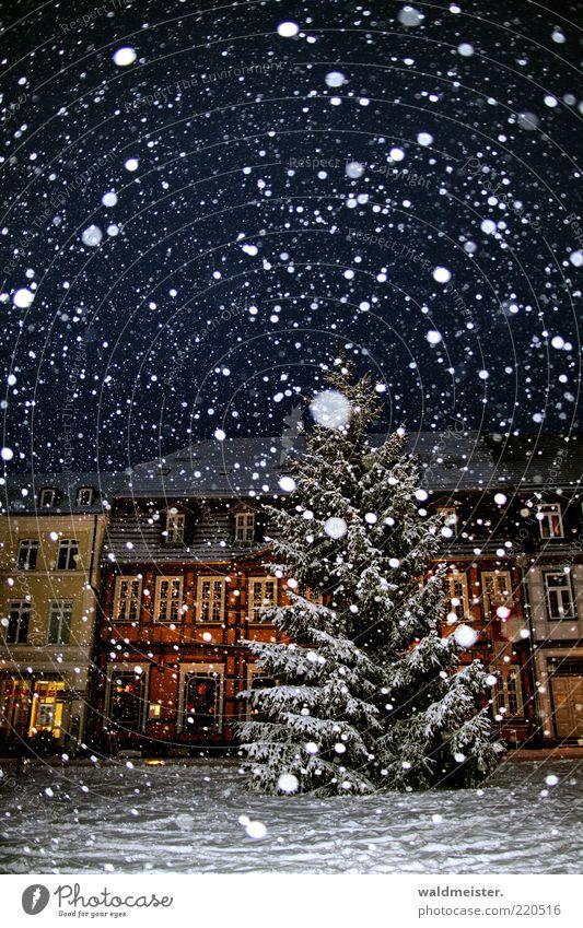 Vorfreude Baum Haus dunkel Schnee Schneefall Fassade Weihnachtsbaum fantastisch Tanne mehrfarbig schlechtes Wetter Altstadt Blendenfleck Kleinstadt Gebäude