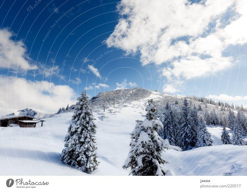 Predigtstuhl Natur Himmel weiß Baum blau Winter ruhig Wolken kalt Schnee Berge u. Gebirge Landschaft Alpen Tanne Hütte Bayern