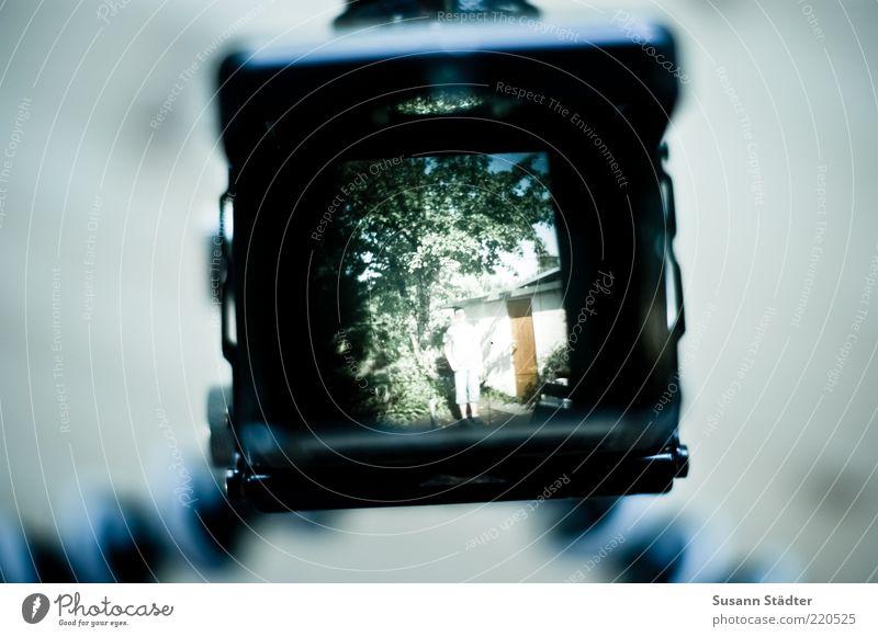 secret garden Baum Sommer oben Garten Fotografie maskulin außergewöhnlich Fotokamera Lomografie entdecken analog Fotografieren digital Mittelformat Sucher