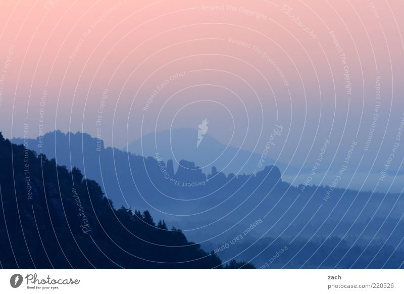 Sachsen Schweiz Natur Himmel blau ruhig Ferne Erholung Berge u. Gebirge Freiheit rosa Nebel Aussicht außergewöhnlich Schönes Wetter Tal Morgendämmerung Sonnenuntergang
