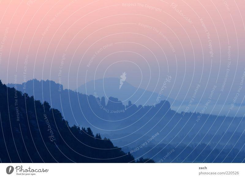 Sachsen Schweiz Natur Himmel blau ruhig Ferne Erholung Berge u. Gebirge Freiheit rosa Nebel Aussicht außergewöhnlich Schönes Wetter Tal Morgendämmerung