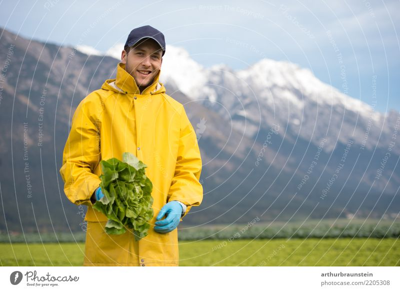 Erntehelfer bei der Gemüseernte auf dem Gemüsefeld Mensch Himmel Natur Jugendliche Gesunde Ernährung Junger Mann Berge u. Gebirge 18-30 Jahre Erwachsene