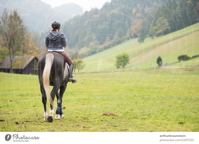 Junge Frau reitet auf Pferd in der Natur Mensch Ferien & Urlaub & Reisen Jugendliche Landschaft Tier 18-30 Jahre Erwachsene Leben Lifestyle feminin Sport