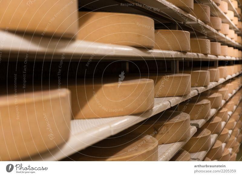 Käse im Regal in der Käserei Lebensmittel Milcherzeugnisse Käselaib Ernährung Bioprodukte Vegetarische Ernährung Gesundheit Gesunde Ernährung Molkerei