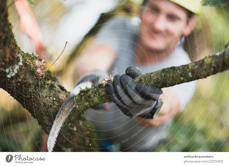 Baumpfleger schneidet Ast ab Freizeit & Hobby Garten Klettern Bergsteigen Beruf Baum fällen Förster Landwirt Wald Landwirtschaft Forstwirtschaft Mensch maskulin