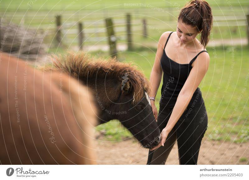 Junge Frau mit Pferdeschwanz auf Pferdekoppel bei den Pferden Glück Freizeit & Hobby Reiten Reitsport Pferdenarr Pferdestall Landwirtschaft Forstwirtschaft